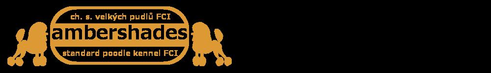 cropped-logo-horizontalni-web.png