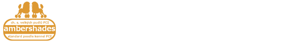 cropped-logo-vertikalni-web.png